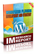 WordPress Plugin Strategy and Development