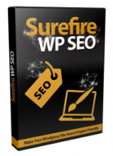 Surefire WordPress SEO Video Series